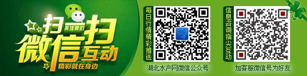 欢迎关注湖北千赢电子游戏平台网微信公众号