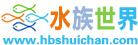 湖北千赢电子游戏平台网水族世界