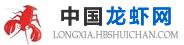 中国龙虾网