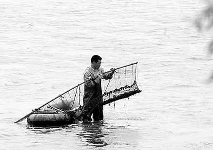 浑河脏田螺热卖大排档 水质未达标鱼虾不宜食
