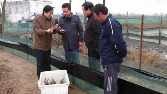 审计署南京办关注特色千赢电子游戏平台养殖情况