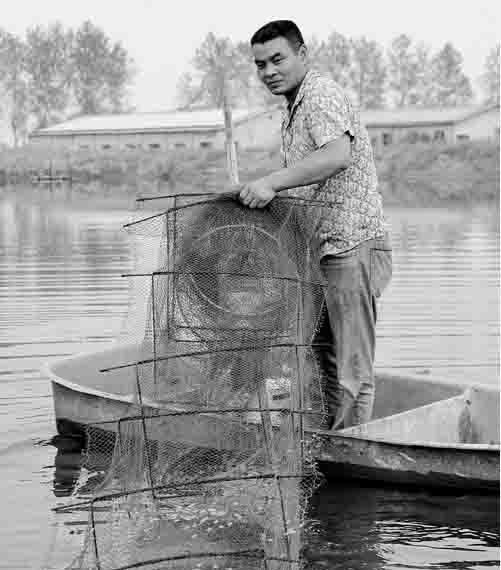 湖北鄂州蒲团乡杨东华:南美白对虾养殖第一人