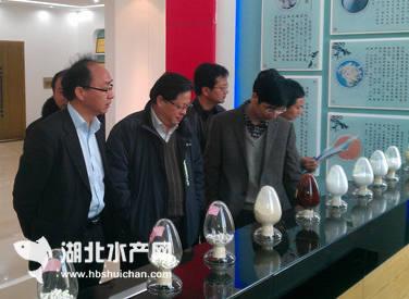 上海市千赢电子游戏平台办主任梁伟泉率队考察湖北千赢电子游戏平台业