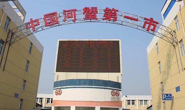 江苏兴化河蟹交易动态屏  指导全国每天河蟹价