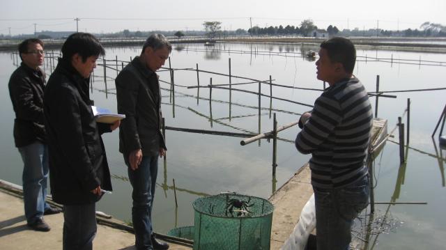 江苏省渔业科技入户专家深入金坛示范户塘口调研河蟹养殖