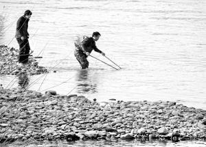 甘肃兰州市黄河边上电鱼频现