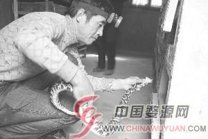"""江西上饶婺源县:冬天蛇""""不眠"""""""