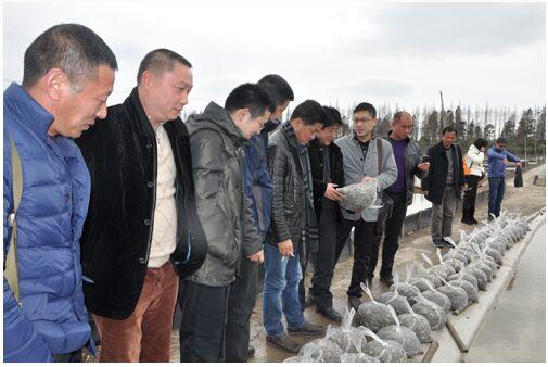 太湖渔管办赴崇明考察河蟹苗种溯源管理和监管情况