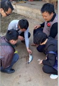 云南文山市积极做好春季鱼病防控指导工作
