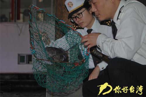 台湾活鱼首次直航厦门