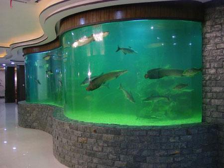 大型鱼缸维护的两大方法