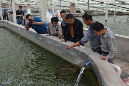 北京市渔业协会来陕西渭南合阳县考察滩地渔业