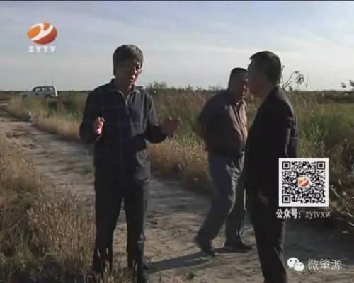 黑龙江省beplayapp体育下载技术推广总站邹民一行到肇源县调研
