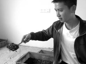 浙江宁波象山有个男青年发现商机 养虫大斗餐厨垃圾