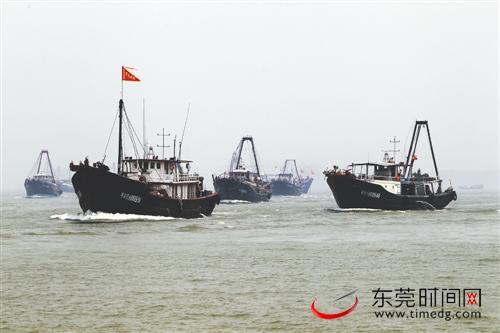 广东东莞5年内投入2580万元支持现代渔业发展
