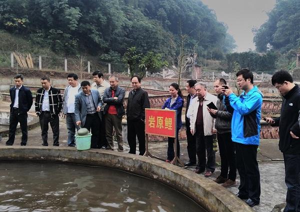 中国科学院曹文宣院士一行到贵州赤水河开展长江上游特有鱼类生态观测站选址考