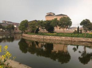 杭州余杭区运河街道全面实施黑鱼养殖综合整治