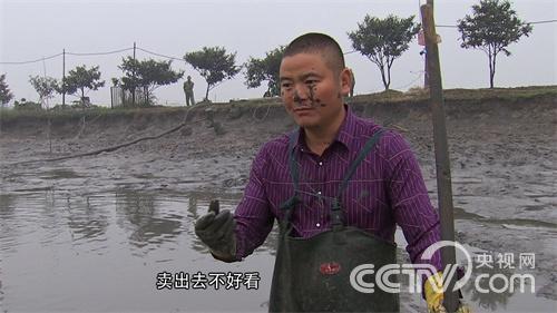 一年多卖千万的秘诀:同样是养鱼,他总比别人赚得多