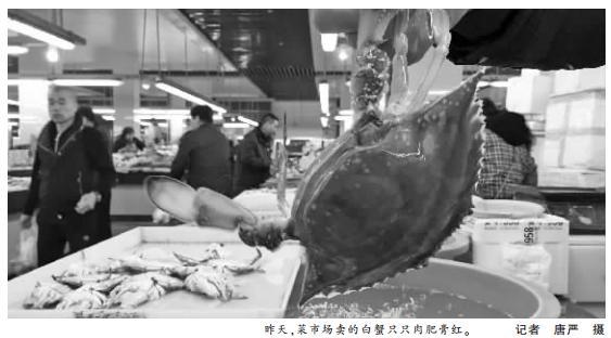 西北风吹起宁波菜市场白蟹热销 价格比去年略贵