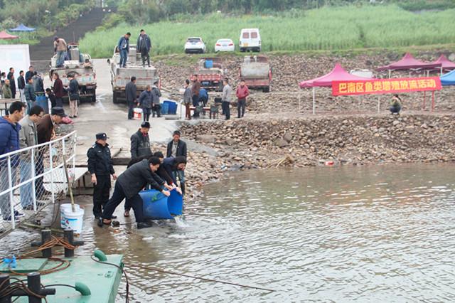 重庆巴南区开展鱼类资源增殖放流活动