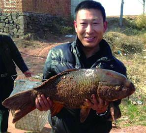 山东即墨一男子20多分钟钓上16斤重鲤鱼 众人合影后放生