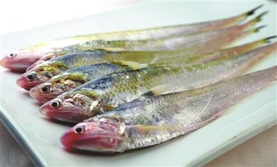 长江刀鱼身价翻倍 最高5000元/500克