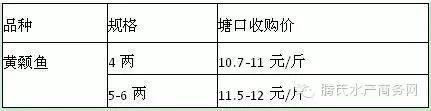 黄颡鱼存塘量少 鱼价持续上涨Beplay官网版户惜售