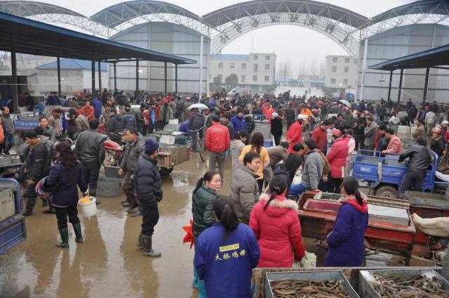 超强冷空气刷新各地华东多地最低气温 黄鳝市场销量应声下滑