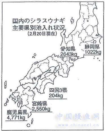 日本国内主要县鳗苗入池情况小结(至2月18日)