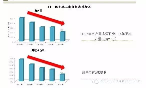 珠三角地区不可阻挡的趋势—罗氏沼虾套养模式