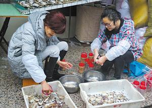 """浙江宁波奉化市:又到一年""""蟹糊飘香""""时 海边渔民忙着备年味佳肴"""