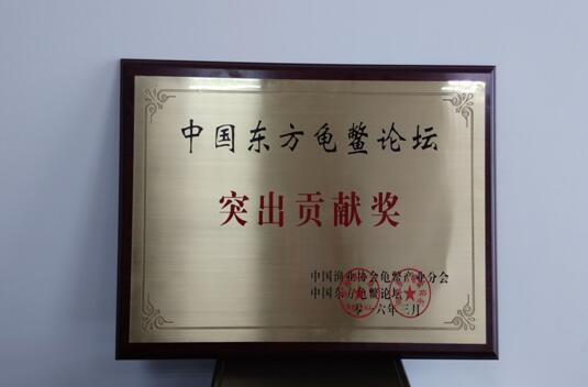 江苏镇江丹阳生态甲鱼蜚声海内