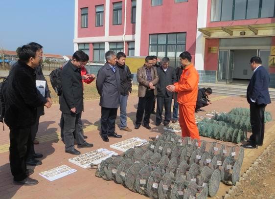 """山东省海洋资环院承担的""""优质高出肉率牡蛎新品系选育"""" 通过阶段性验收"""