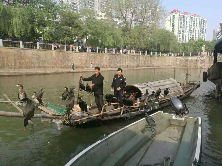 湖南常德渔政联合公安执法再破非法捕鱼案件