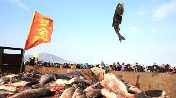 黑龙江牡丹江市镜泊湖冬捕节启幕 单网产量8万斤头鱼32斤