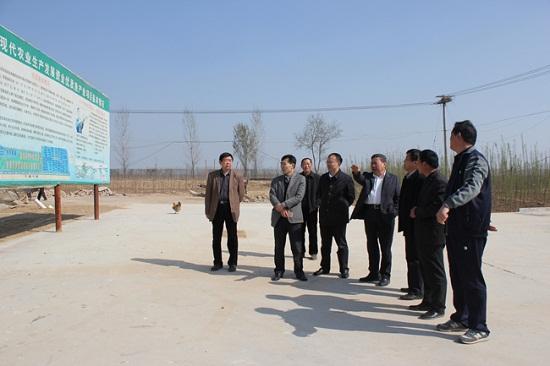山东聊城东阿县现代农业发展资金优质鱼产业项目通过省级验收