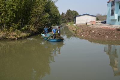 """上海金山区开展""""水仙1号""""渔业专项执法行动"""