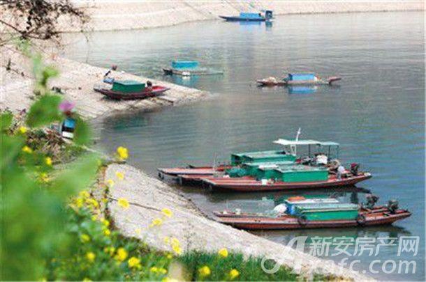 长江池州(安徽)段已全面进入禁渔期 专业渔民可享受补贴