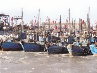 天津滨海新区海域滩涂现冰封 提醒渔民早防范