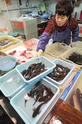 江苏苏州:今年的供应量比往年增加了不少 菜花塘鳢鱼身价依然很坚挺