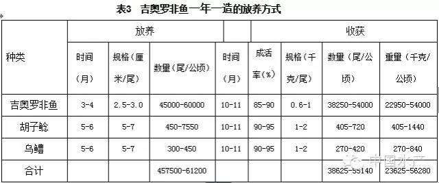 吉奥罗非鱼健康Beplay官网版技术
