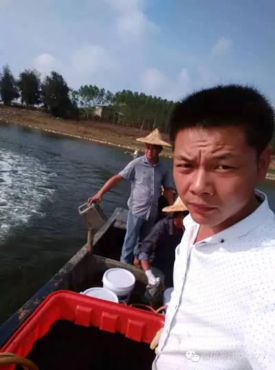 关于水库罗非鱼高温链球菌防治案例篇