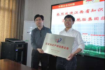 双胞胎集团荣获国家知识产权优势企业称号