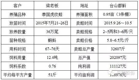 天邦全熟化蛙料再创佳绩 养牛蛙亩赚11万料比低至0.74