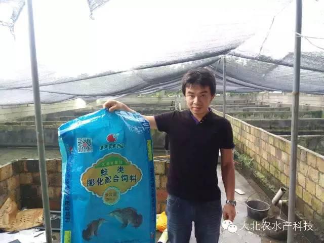 大北农蛙料表现出众,闽南错峰养殖达人1斤料出蛙1斤多