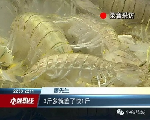 广东佛山黄岐这个千赢电子游戏平台海鲜市场买海鲜遭骗秤