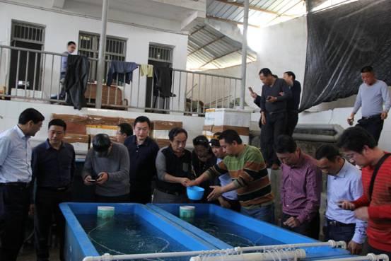 南京渔业考察团考察重庆开县渔业发展情况
