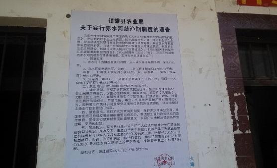 云南昭通镇雄县渔业千赢电子游戏平台站扎实抓好长江禁渔工作