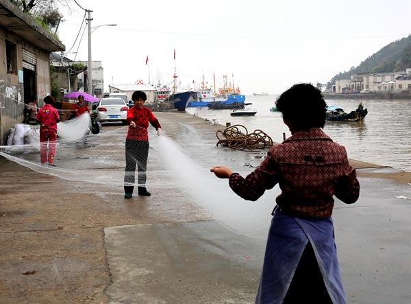 浙江台州玉环县渔家女整理渔网支援前方生产