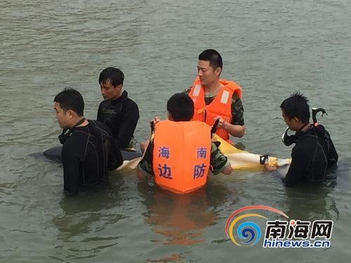 """受伤海豚游入海南万宁港口""""求救"""" 获救鸣叫仿佛道谢"""